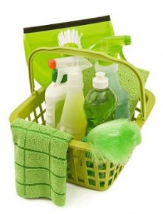 Green Eco-friendly Cleaning Kit