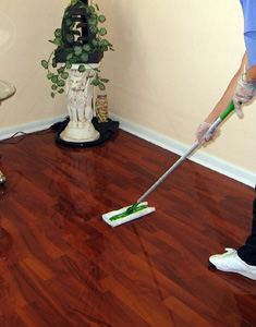Floor Cleaning in New Port Richey, Florida